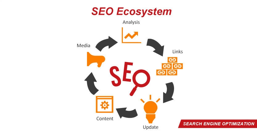 Search Engine Optimization Ecosystem