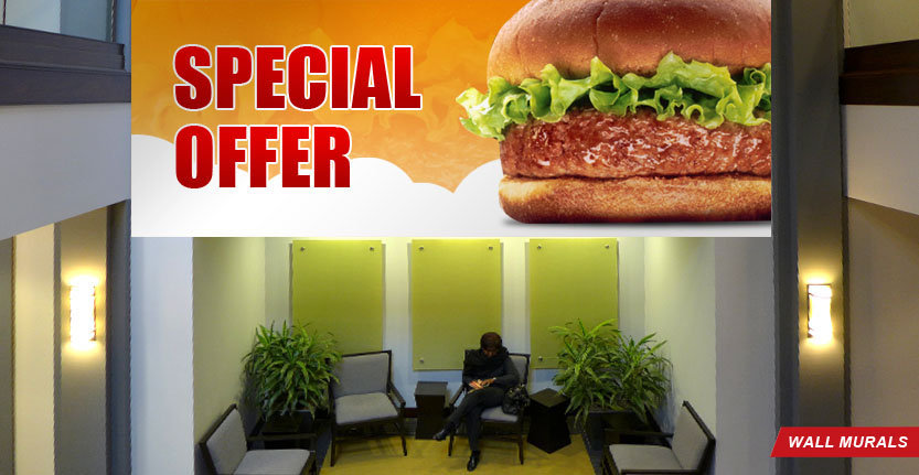 Special Offer of Wall Murals
